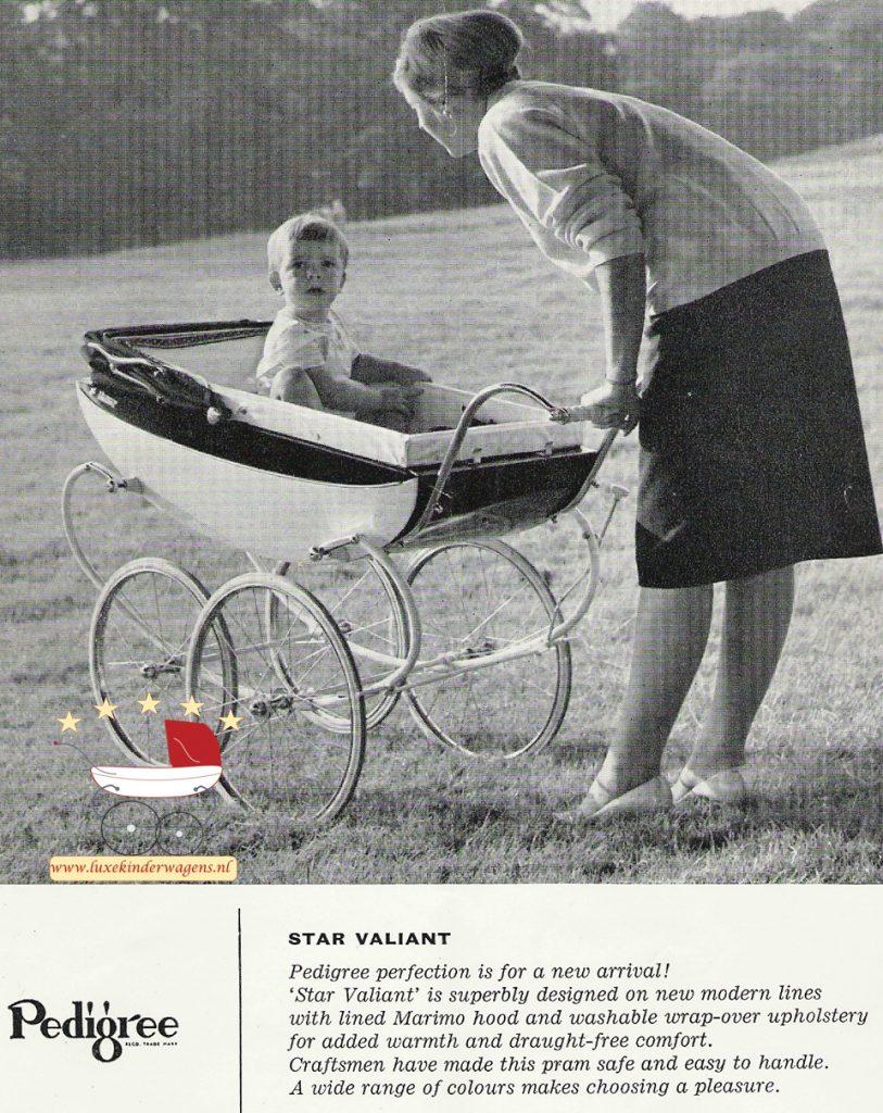 Pedigree Star Valiant 1961